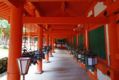 Lanterns in Kasuga Taisha