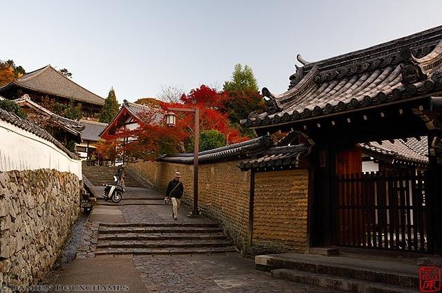 Nara Districts
