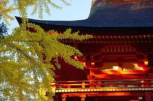 Nara Itineraries