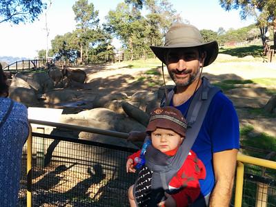 near the elephants