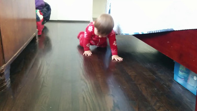 Christmas Day crawling