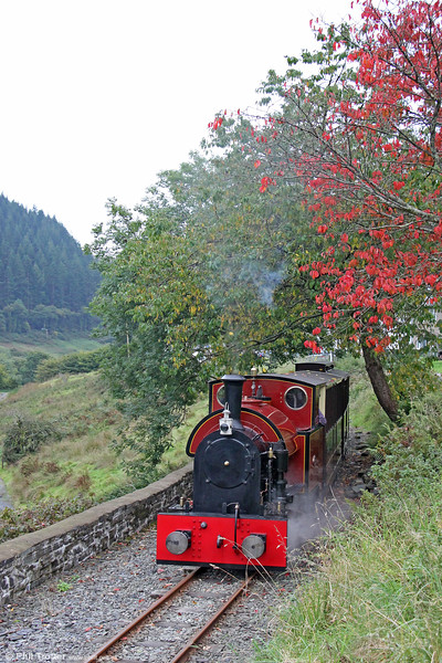 Corris Railway new build 0-4-2ST (Winson Engineering 17/2005)  passes Maes-y-Llan heading for Corris on 24th September 2017.