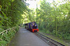 "Alan Keef 1' 3"" gauge steam outline 0-6-2DH (51/1995) at Cricket St. Thomas Wildlife Park, Chard."