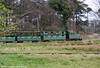 Margam Park Railway 0-4-0DH 'Margam Castle' heads away from the Orangery Halt to make the long climb into the park on 4th April 2009.