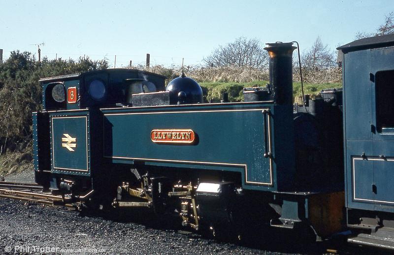 BR blue Vale of Rheidol 2-6-2T no. 8 'Llewelyn' at Devil's Bridge.