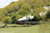 Vale of Rheidol GWR 2-6-2T no. 9 'Prince of Wales' heads away from Nantyronen with the 1400 Aberystwyth to Devil's Bridge on 25th May 2013.