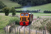 W&LLR Diema 6wDM no. 17/175 approaches Coppice Lane with the 1000 Welshpool to Llanfair Caereinion on 31st August 2013.