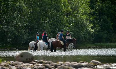 Rideleir ved Skjomen Ridesenter i Skjomdalen, Hestene avkjøler beina etter ei økt. 23. august 2014.