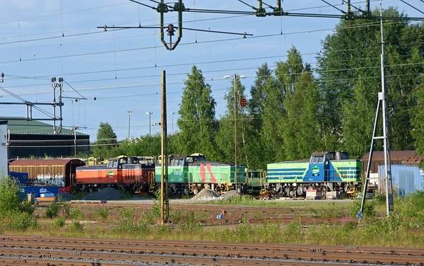 Green Cargo T44s Nos 322 (left), 323 & 318, Boden, Sweden, Fri 24 July 2015 - 1918.