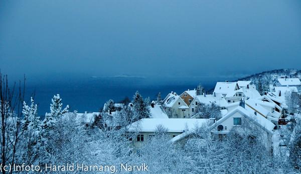 Oscarsborg, utsikt mot Bjerkvik, februar 2010