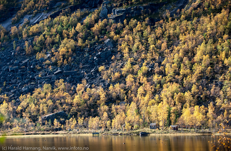 Skamdalen, Beisfjord 24. september 2015. Lillevannet.