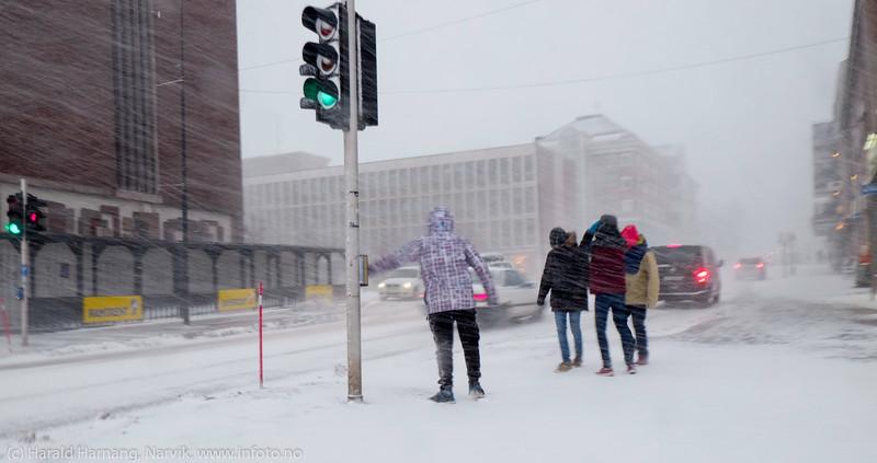 """Fire venninner forsøkte å komme seg over E6 på torget. Rådhuset til venstre. Forsmak på uvær i Narvik sentrum, ekstremværet """"Ole"""" var ventet å slå til i Narvik kl 16-18. Det kom heldigvis aldri i full tyngde. Bildet tatt på formiddagen i sentrum, ca kl 12-13."""