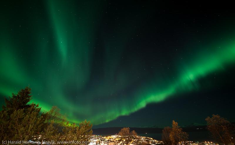 Nordlys over Narvik, 6. oktober 2015 kl 2230-23.
