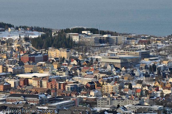 Fire skoler på ett bilde: Villaveien skole (gul bygning i midten), Tårnveien skole (rød bygning til venstre for V), Frydenlund videregående skole til høyre (bak idrettens hus) og i forgrunnen deler av Oscarsborg vgs.