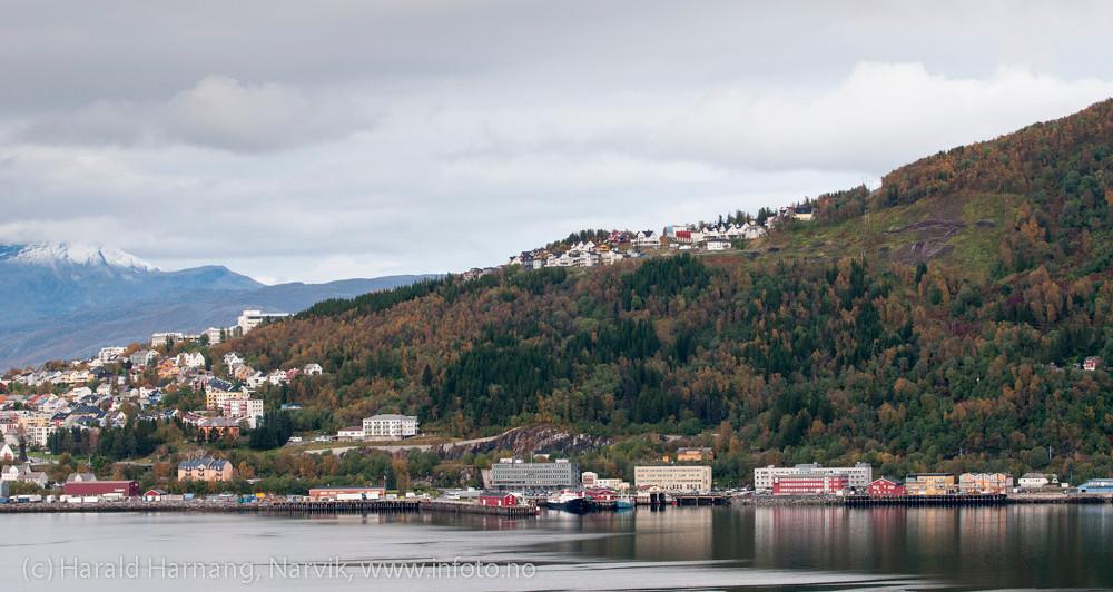 Narvik havn. Rett over sees mulig utbyggingsområde ved Skistua-feltet , ryddet og klart.
