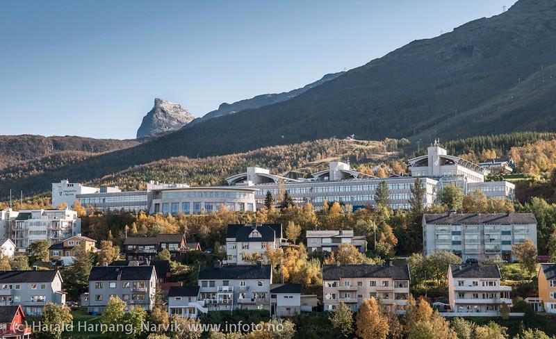 Høgskolen i Narvik med Tøttatoppeni bakgrunnen. Narvik sentrum, foto 19. september 2012.