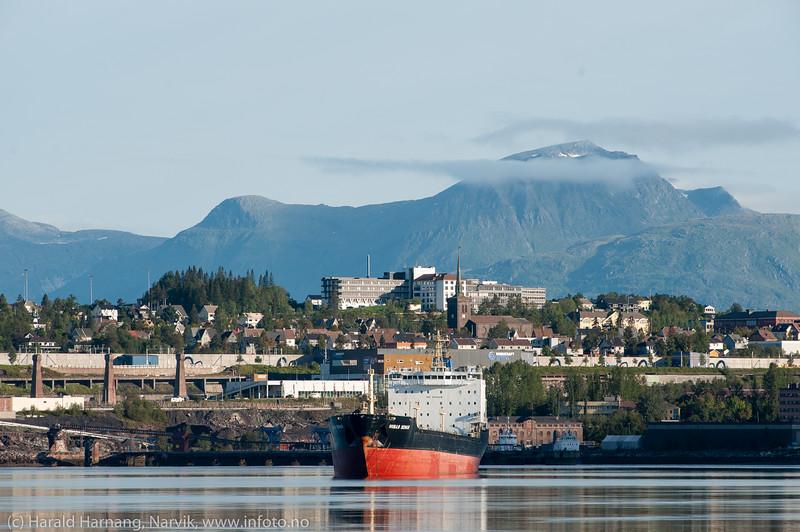 Russiske Novaya Zemlya på Narvik havn. Kirka og sykehuset i bakgrunnen. Båten er 181 m lang og 23 m bred, 23 645 dWt og bygget i 2009. Denne båten er omlag halvparten så stor som  de vanligste skipene.
