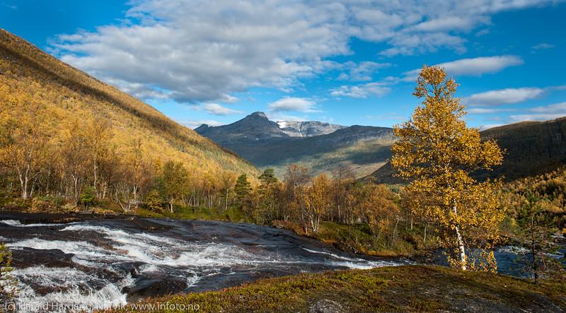 Lakselva, nær laksetrappa. Skamdalen, Beisfjord 24. september 2015