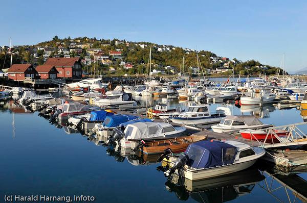 Småbåthavna i Vassvik