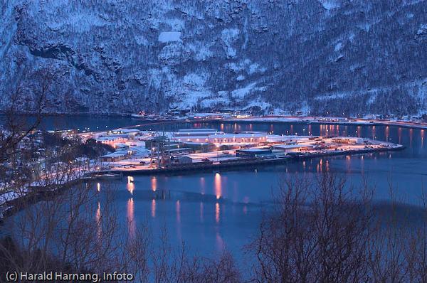 Fagernesterminalen til Narvik Havnevesen. Nærmest kontainerkran. I bakgrunnen på utbygd område er handel, industri og transport.