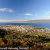 Narvikhalvøya