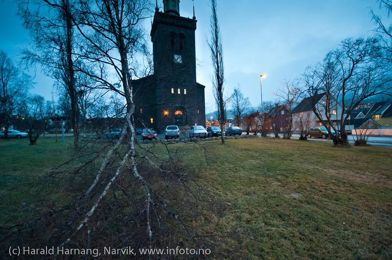 25.12.2011: Mens store deler av Norge opplevde ekstremvær på natta, fikk vi som vanlig i Narvik bare små problemer. I kirkeparken ga ei grein etter for vindkulene. Småtterier.