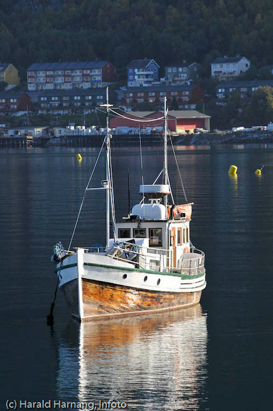 Båt, Narvik havn. I bakgrunnen trelastlager og hus på Fagernesskrenten.