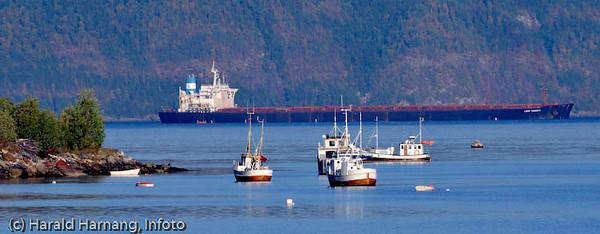 Fiskefartøyer og/eller fritidsbåter i forgrunnen, oppankret utenfor Ankenesstrand. I bakgrunnen lastet malmskip.
