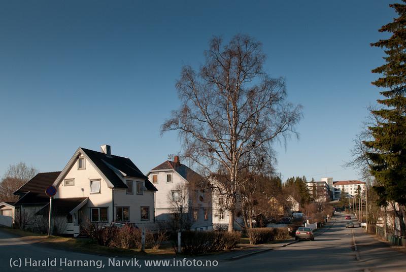 Sandmyrveien i Narvik. Bak til høyre sykehuset.