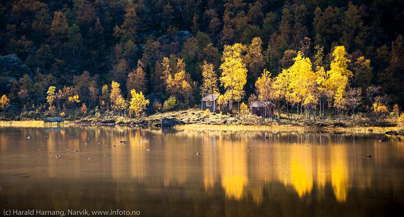 Lillevannet, Skamdalen, Beisfjord 24. september 2015