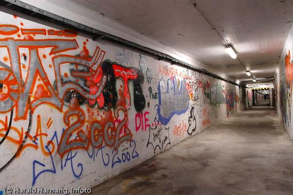 Bolagstunnellen ble bygget mellom Framnes og havna under LKABs område, dels som en adgang mellom bydelene og dels som bomberom. Etterhvert ble det også et tagge-eldorado med mye kunst på veggene. I forbindelse med utbyggingen av SILA (2007-8) ble Bolagstunnellen stengt for godt.