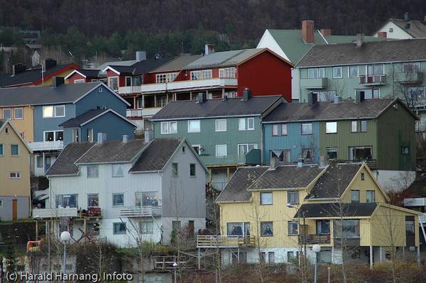 Deler av Traladsvik. Foto småbåthavna/moloen.