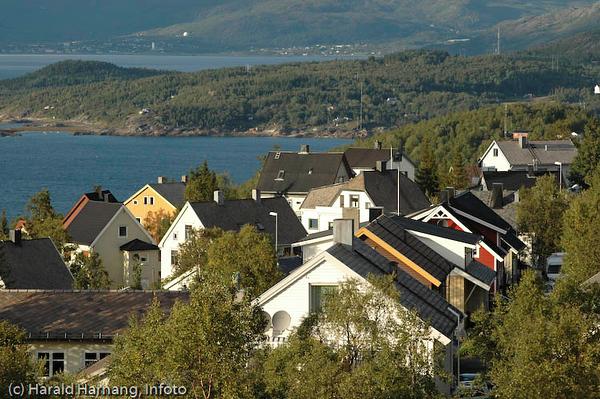Boliger i Fjellveien. I bakgrunnen deler av Bjerkvik.
