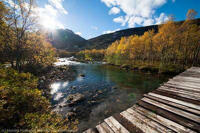 Skamdalen, Beisfjord 24. september 2015