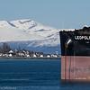 Til ankers på Narvik havn, Leopold LD, 18 000 dwt, 292x45 m, Maltareg bulk carrier. I bakgrunnen småbåthavna på Ankenes.