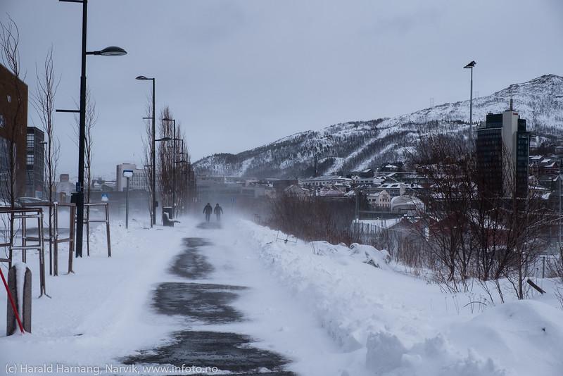 Sist i mars 2019, snø og vind.