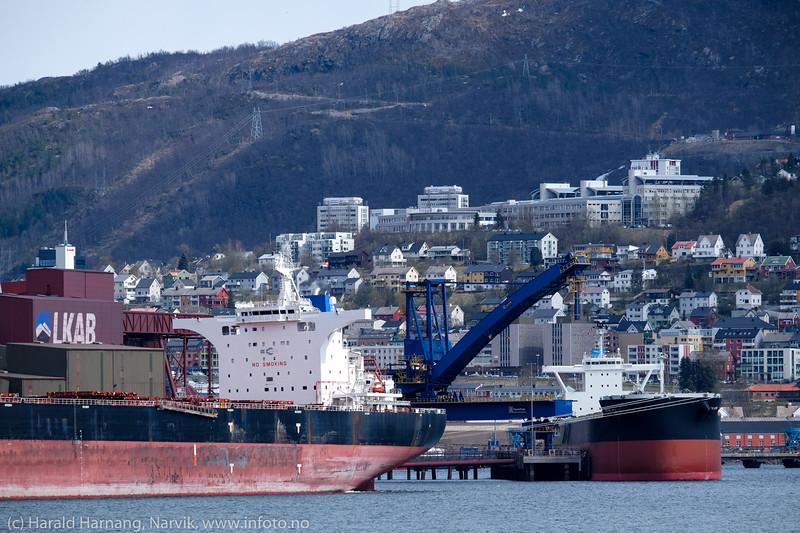 Malmskipet San Francisco. dwt: 181066 t, 292 m × 45.05 m, byggeår: 2014, laster ved kai 5<br /> Ved kai 7 (under testing) er Royal Hope, dwt: 80800 t,  229 m × 32 m, byggeår: 2015.<br /> 13. mai 2016