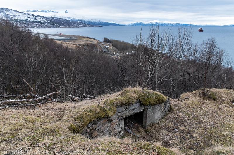 """Framneslia 6. april 2016: Like nedenfor Galapagos-stien resten av """"Festung Narvik"""". Til venstre nordre del av flyplassen i Narvik. Og utenfor Ankenes ligger et malmskip og venter på tur til lasting."""