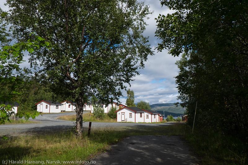 Narvik campingplass