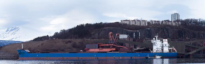 """Anangel Trust, 18 000 dwt, 291 x 45 m, gresk, laster ved kai 5. Søndag 3. april 2016. Malmskipet får bunkers fra tankskipet """"Oytank"""" (størrelse 30 x 5 meter), altså 1/10 av malmskipet."""