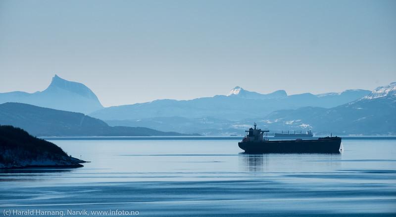 Stille på fjorden. 11. mars 2019.