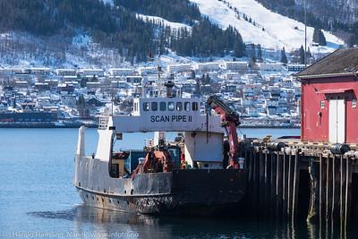 Havneterminal cruise