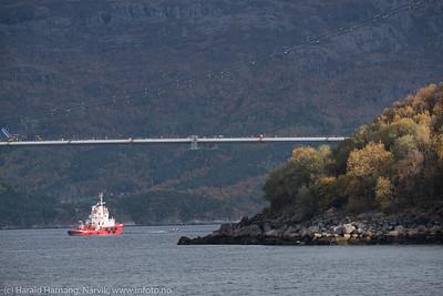 Slepebåt ved Hålogalandsbrua
