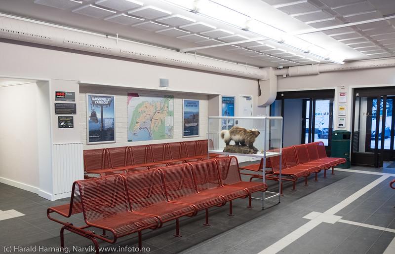 Narvik stasjon, 25. nov. 2018