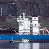 """Anangel Trust, 18 000 dwt, 291 x 45 m, gresk, laster ved kai 5. Søndag 3. april 2016. Malmskipet får bunkers fra """"Oytank"""", et norsk tankskip, 30 x 5 m."""
