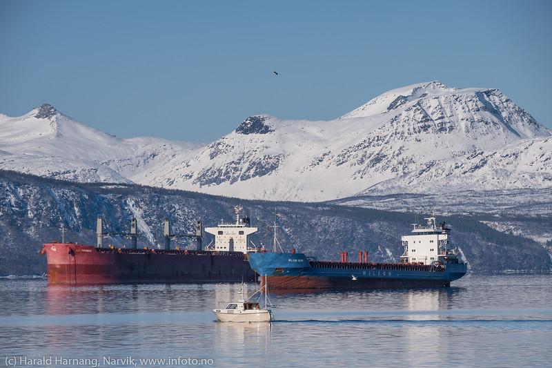 Malmskip og båter utenfor Narvik havn. Foto fra moloen på Ankenes 14. mars 2018.