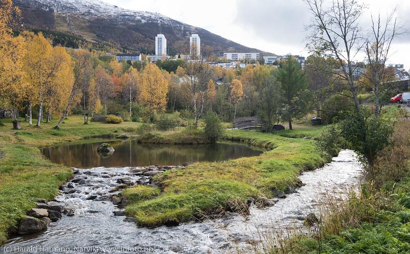 Park i elvedalen i Taraldsvik