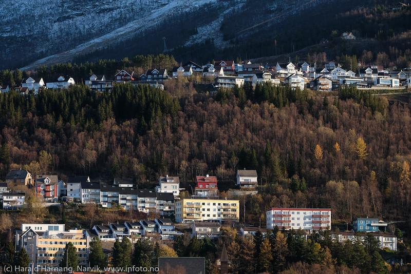 Skistua, Oscarsborg og Hagebakken, foto fra Handelspark-området. 20. okt 2020.