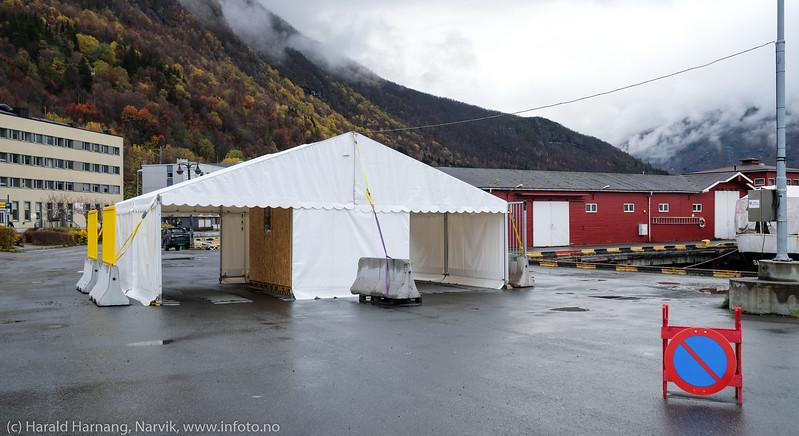 Korona-telt