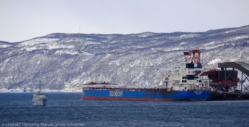 Liten og stor. Narvik havn 13. mars 2020